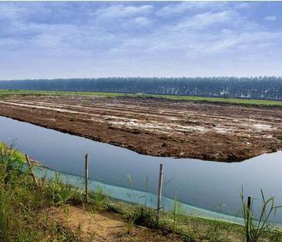 建设好的小龙虾养殖池塘