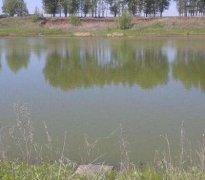 小龙虾养殖池塘的水位如何控制?